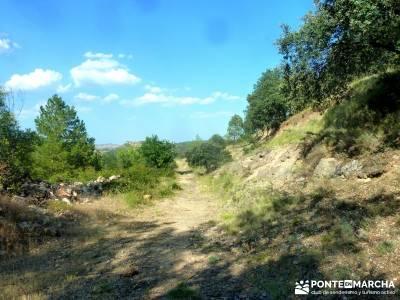 Meandros Río Lozoya-Pontón de la Oliva;actividad vespertina; hayedo de irati monsterio de piedra;
